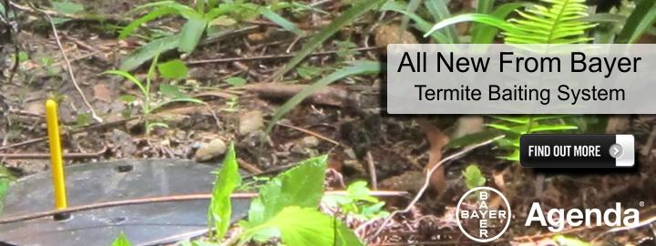 Agenda Termite Baiting System Garrards